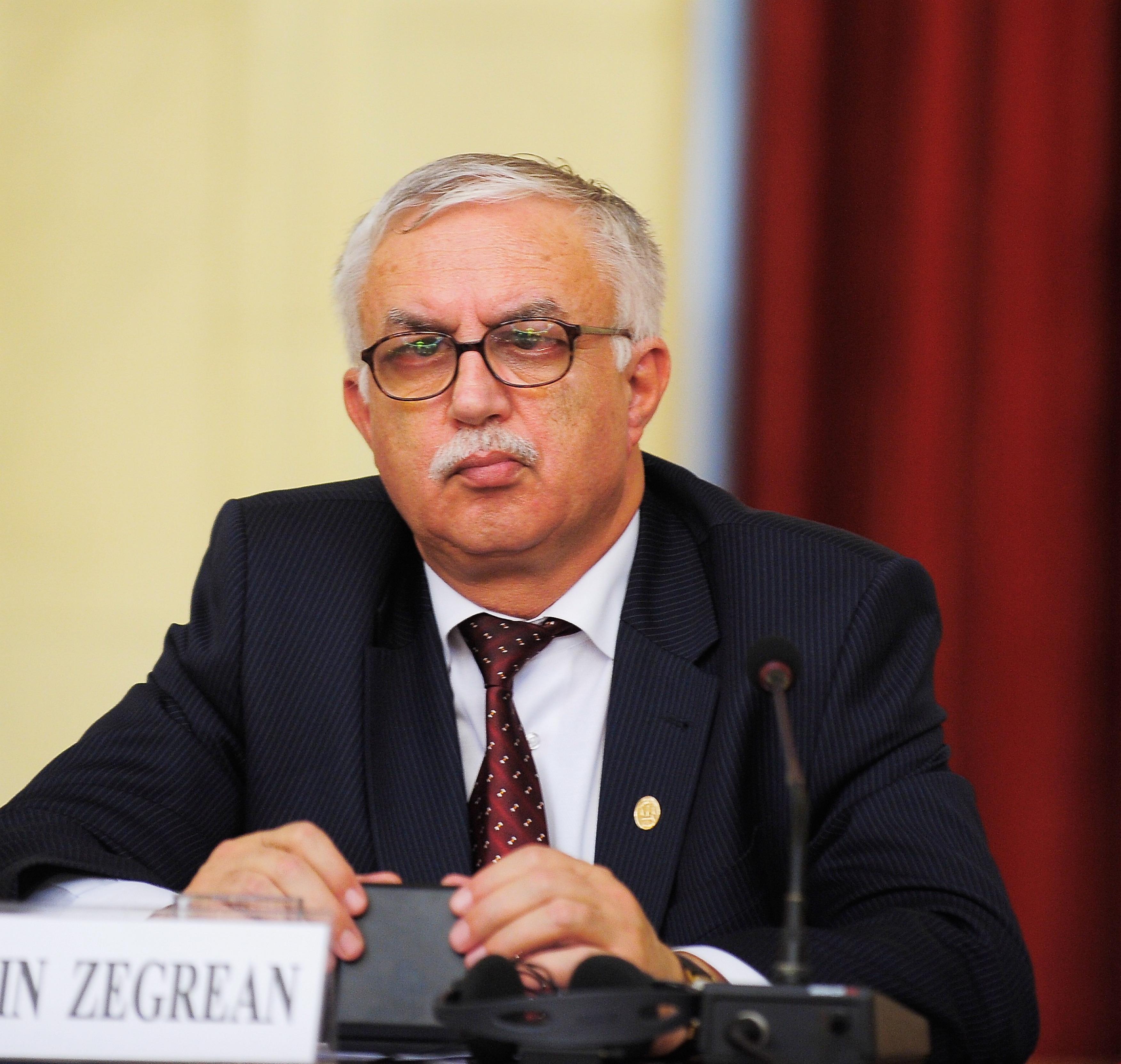 """Zegrean promite o decizie rapidă dacă bugetul e contestat la CCR: """"Nu noi ne ocupăm de finanţele statului"""""""