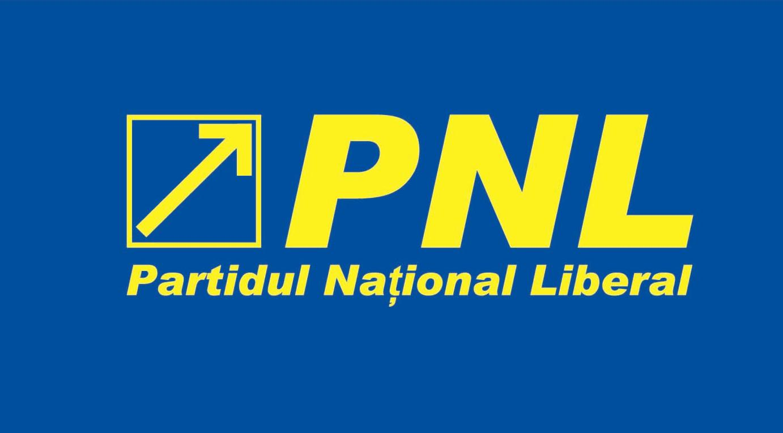 Noul Statut al PNL se discută joi în forul partidului. Toţi liderii de filiale vor fi în BPN