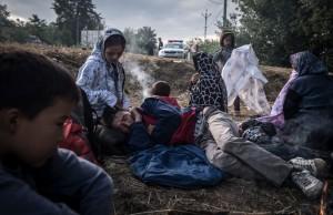 Criza imigranților ar putea fi transata in 14 septembrie