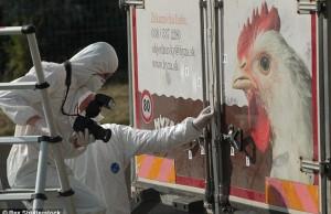 Cine a condus camionul morții din Austria