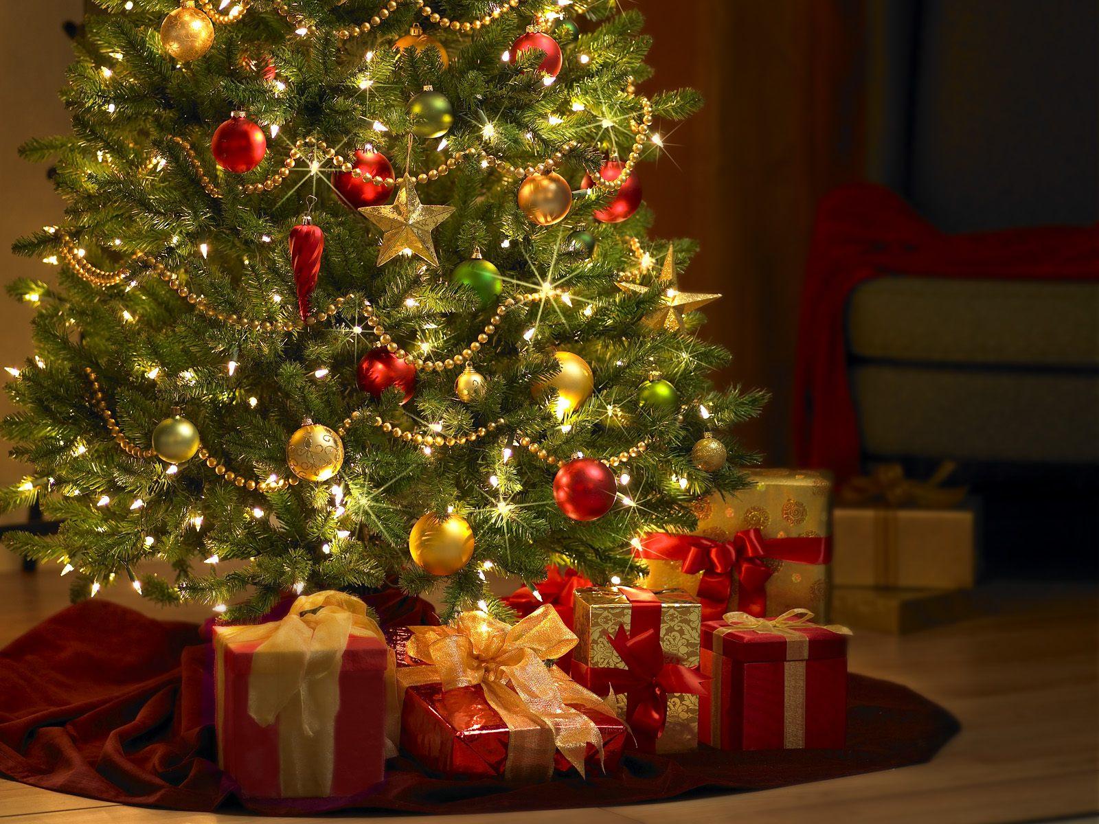 5 trucuri care păstrează bradul de Crăciun proaspăt și o lună de zile