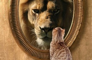 Oglinda oglinjoara cine e cel mai bogat din Republica Mazare