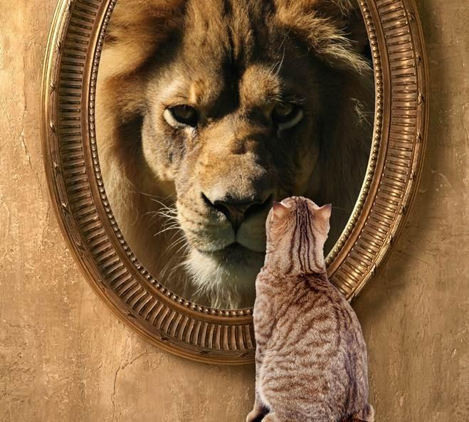 Oglindă, oglinjoară, cine e cel mai bogat din Republica Mazăre?