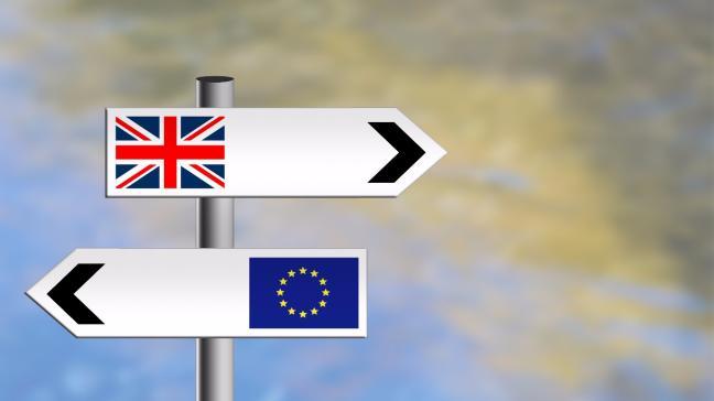 Parlamentul britanic va controla Brexit-ul? Theresa May, pe făraș