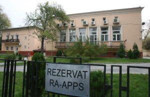 Lista rusinii RA-APPS doua mari partide politice ambasade primarii