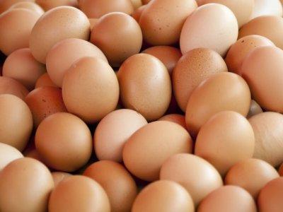 Mii de ouă infectate cu salmonela, retrase de pe piață
