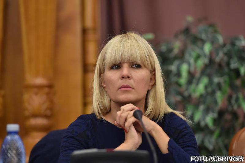 Dosarul Gala Bute. Elena Udrea susține cu tărie că este nevinovată