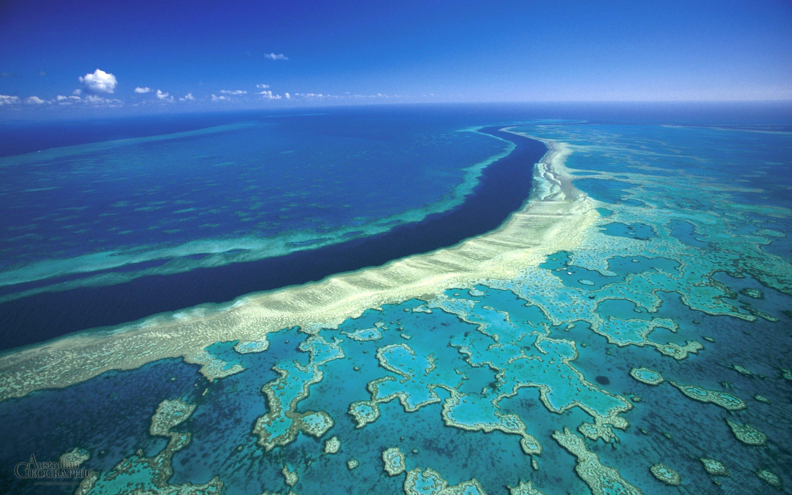 Trei locuri uimitoare de pe Pământ, care ar putea dispărea! Consecințele schimbărilor climatice