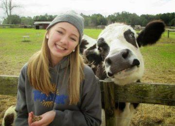 Vacile sunt doar niște câini mai mari, iar aceste fotografii sunt dovada! Imagini amuzante