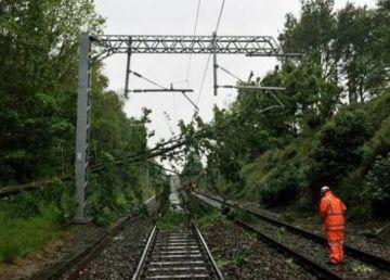 Copac căzut pe şinele de tren