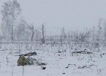 UPDATE: Un avion s-a prăbușit lângă Moscova. Nu există supraviețuitori