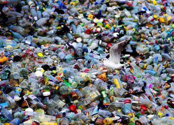 Un pas uriaș în lupta cu poluarea. A fost creată enzima care se hrănește cu plastic