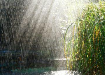 Soare și ploi în minivacanța de Rusalii