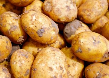 S-a inventat cartoful care nu distruge mediul