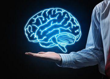 O nouă descoperire privind creierul: Cum funcţionează, de fapt, acesta?