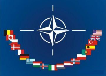 Ședință solemnă a Parlamentul României pentru împlinirea a 15 de ani de la aderarea la NATO