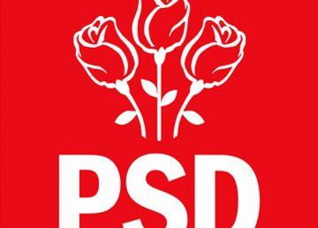 PSD şi Minorităţile au vot împotriva desfiinţării Secţiei Speciale