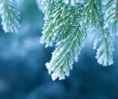 Vom avea zăpadă de Crăciun și de Revelion?