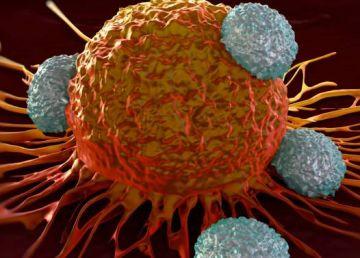 O nouă descoperire ştiinţifică ar putea revoluţiona tratamentul cancerului