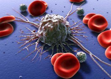Ce rol are vitamina C în dezvoltarea celulelor canceroase