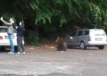 Poză cu ursul