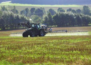 Un stat membru UE interzice folosirea în agricultură a erbicidului glifosat. În România este cel mai folosit de fermieri