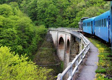 """Unde """"s-a evaporat"""" prima cale ferată din România"""